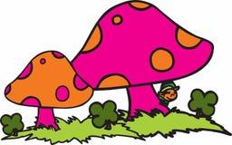 Irish Mushrooms Royalty Free Stock Photography