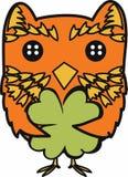 Irish Owl Royalty Free Stock Photo