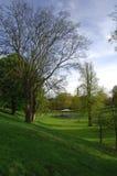 Irish Park Royalty Free Stock Photography
