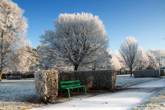 Irish park at winter time Stock Images