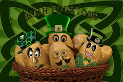 IRISH POTATOES Royalty Free Stock Photos