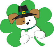 Irish Puppy. A cute puppy with Irish top hat is superimposed on a green shamrock in celebration of St Patricks day Royalty Free Stock Photo