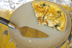 Irish quiche Stock Images