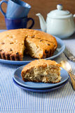 Irish raisin cake Royalty Free Stock Photo