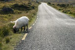Irish road Stock Photos