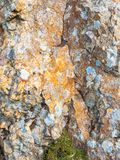 Irish Rock and Lichen royalty free stock photos