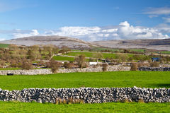 Irish scenery of Burren Stock Photos