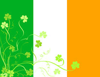 Irish shamrock foliage Royalty Free Stock Photo