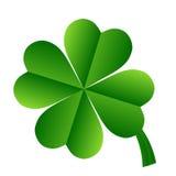 Irish shamrock. Illustration of Irish Shamrock clover in shades of green with nicely curving stalk, white background Stock Photography