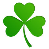 Irish shamrock leaves background for Happy St. Patrick`s Day. EPS 10 royalty free illustration