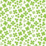 Irish shamrock leaves white background seamless Royalty Free Stock Images