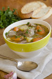 Irish stew Royalty Free Stock Photo