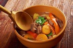 Irish stew farm-style Royalty Free Stock Photo