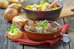 Irish stew. Homemade and slow cooked Irish stew with lamb, potatoes and other vegetables, served in a ceramic bowl Royalty Free Stock Photos