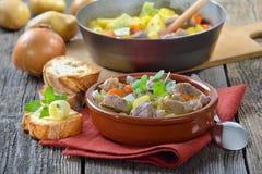 Irish stew royalty free stock photos