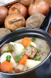 Irish stew, a specialty from Ireland Royalty Free Stock Photo