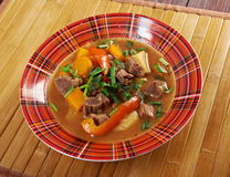 Irish stew with tender lamb meat Stock Image
