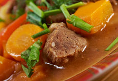 Irish stew with tender lamb meat Royalty Free Stock Photo