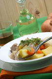 irish stew in a white bowl Royalty Free Stock Photography