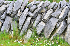 Irish stone wall Royalty Free Stock Photo