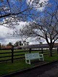 Irish Stud National park. And gardens,Kildare,Ireland royalty free stock images