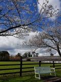 Irish Stud National park. And gardens,Kildare,Ireland royalty free stock photo