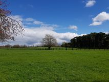 Irish Stud National park. And gardens ,Kildare,Ireland royalty free stock photos