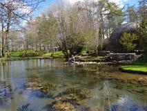Irish Stud National park. And gardens ,Kildare,Ireland royalty free stock images