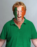 Irish supporter. Hysterical supporter with the Irish flag painted on his face stock image