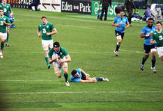 Irish try. The player OBrien is doing a try in the rugby match italy-ireland at the six nations tournament at rome.7/2/2015 royalty free stock photos