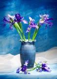 Irissen Royalty-vrije Stock Foto