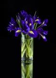 Irissen in een glasvaas royalty-vrije stock afbeeldingen