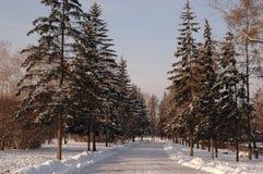 Irkutsk. Gagarin's parkway. Royalty Free Stock Photo