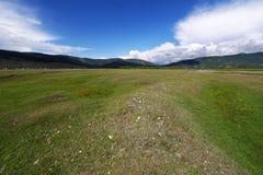 Irkutsk region. Goloustnoe. Siberian nature. Stock Image