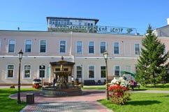 Irkutsk, Russia, August, 29, 2017.Fountain `Swan song` before a Dental centre on Lenin street in Irkutsk in the summer. Irkutsk, Russia. Fountain `Swan song` stock photos