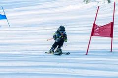 Irkutsk, Russia - 12 febbraio 2017: Concorrenza di slalom snowboar Fotografia Stock Libera da Diritti