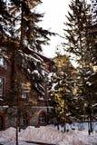Irkutsk. Winter. Architecture Stock Image