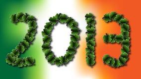 Irländare 2013 Arkivbild