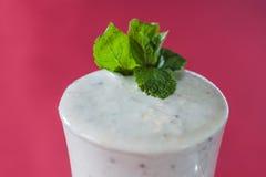 Irländare med en milkshake på en karmosinröd bakgrund Royaltyfria Bilder