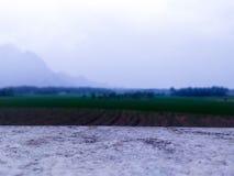Irländarefält nära vid montain Arkivbilder