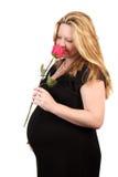 irländsk gravid nätt kvinna Arkivbilder