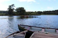 irländsk lake Arkivfoto
