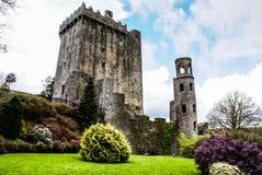 Irländsk slott av Blarney som är berömd för stenen av vältalighet. Ire Royaltyfri Fotografi
