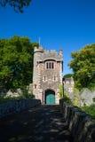 Irländsk slottport Arkivfoto