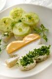 irländsk smörgås för växt av släkten Trifolium Royaltyfri Bild
