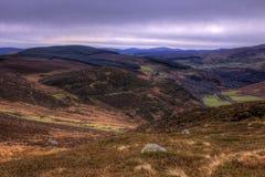 irländska kullar Royaltyfria Bilder