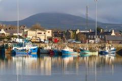 Irländskt hamnstadlandskap i Dingle Royaltyfri Bild