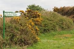 Irländskt landskaptecken för det James fortet Royaltyfria Bilder