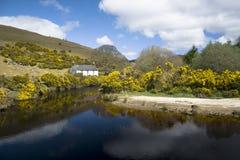Irländskt lantligt lantbrukarhem vid floden Arkivbild