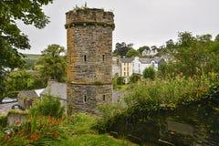 Irländskt torn Arkivfoto